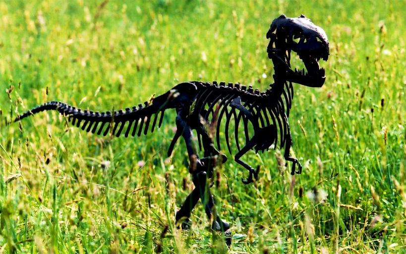 Cette petite sculpture fut la maquette du Tyrannosaure présent sur ce site.