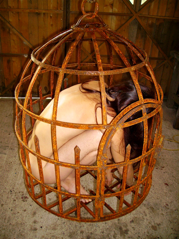 Fabrication d'une cage moyenâgeuse dans l'atelier, destinée à un site historique. Le tout est assemblé à l'ancienne aux rivets, la patine fut réalisée à l'aide d'acides.