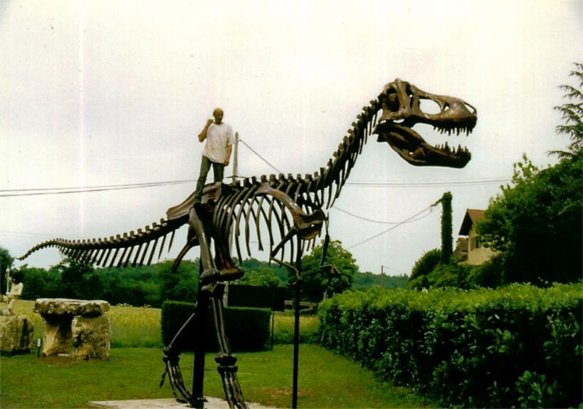 Tyrannosaure Rex grandeur nature dans le musée du Moustier en Dordogne.