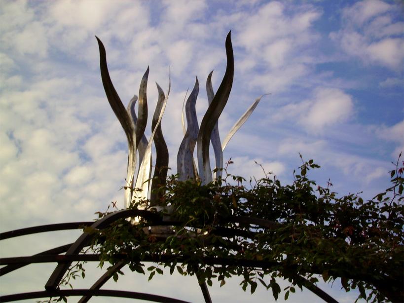 Les pergolas deviennent intéressantes lorsque la végétation commence à les envahir.
