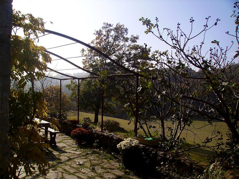 Une fois la végétation installée, cet endroit sera parfaitement ombragé pour des moments de détente ou des repas de famille.